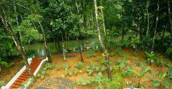 Kuttickattil Gardens