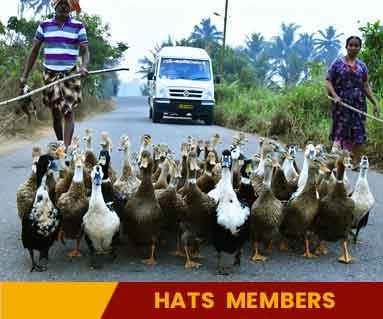 hATS-members